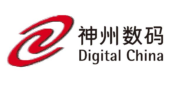 Digital China Logo